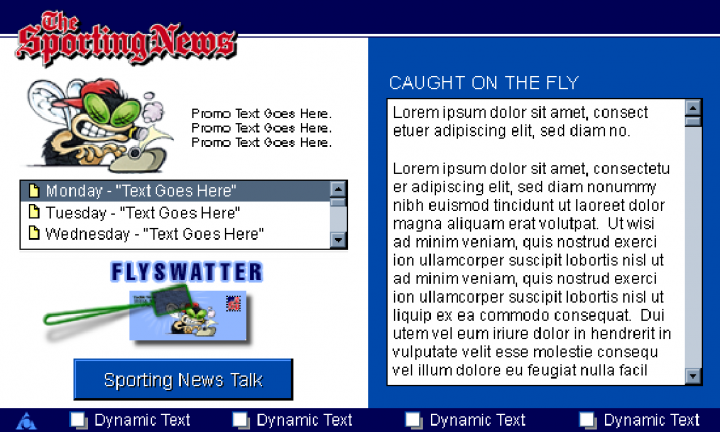 AOL The Sporting News Channel: Caught-on-the-fly Flyswatter Screen