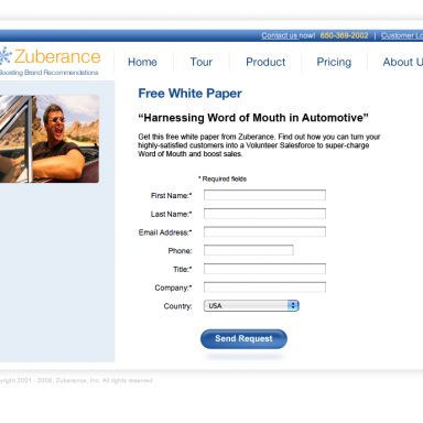 zuberance-landing-page-for-auto-industry-white-paper-01